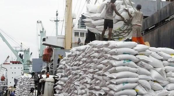Concern expressed over falling rice exports, Reduced exports